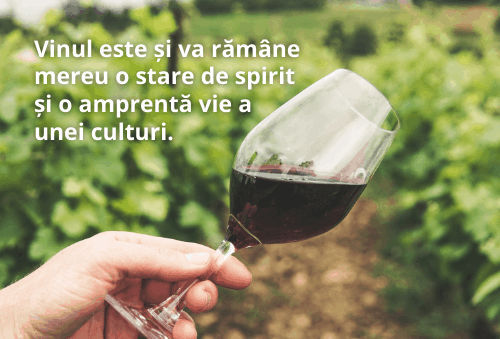 Dăm startul poveștilor cu și despre vin, de ziua lui alături de crama Viișoara!
